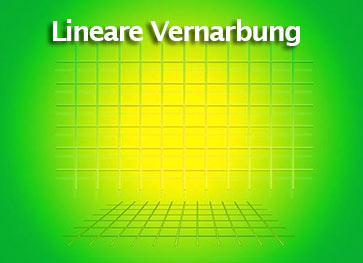 lineare Vernarbung